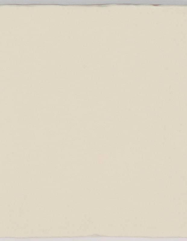 Carrelage monochrome - ZI0802003